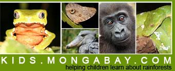 kids_mongabay_com